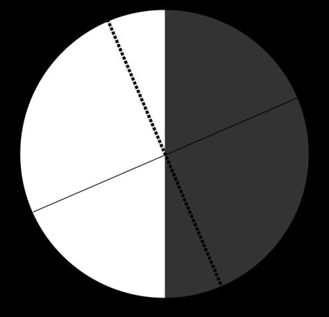 solsticio figura